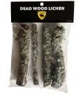 Biodegradables - Dead Wood Lichen