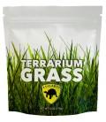 Terrarium Grass